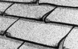 Clawing Roofing Shingles