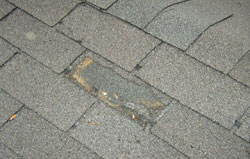 Wind Damage Roofing Shingles